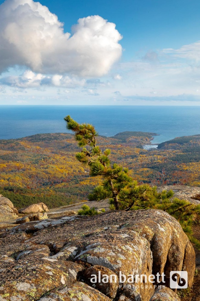 Cadillac Mountain in Acadia National Park, Bar Harbor, Maine, and Return to the Royal Princess